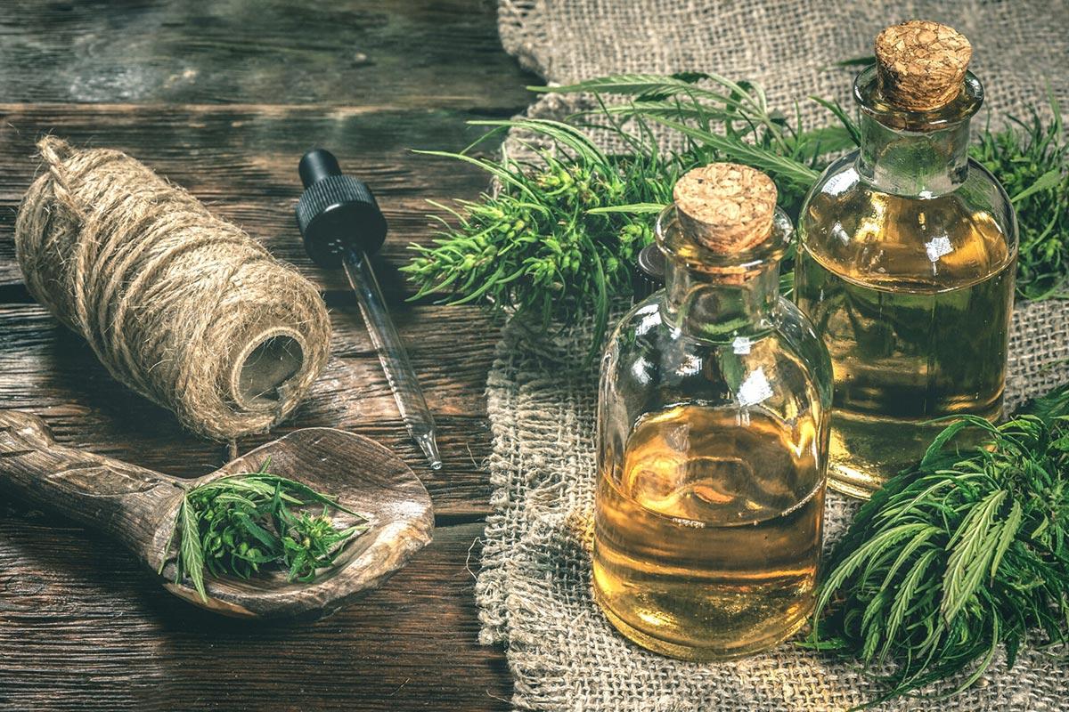 Das Endocannabinoid-System